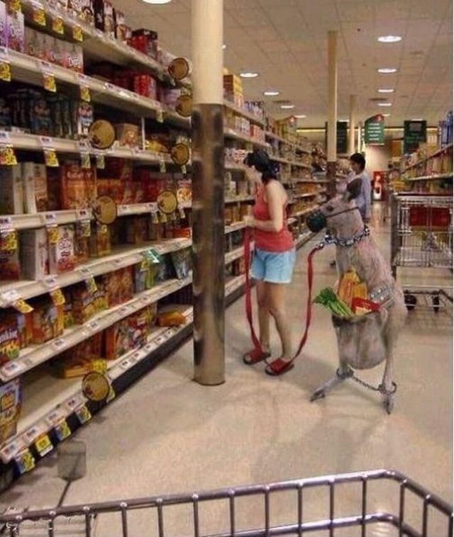 supermarket 51