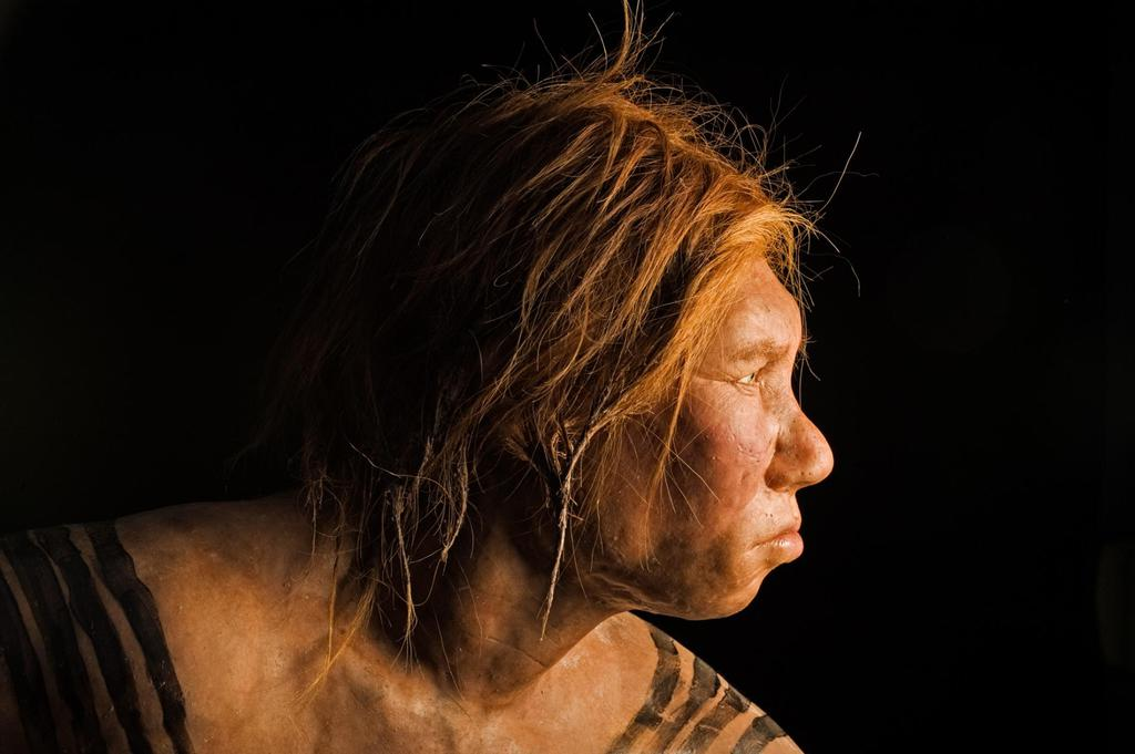 Projected image of a Neanderthal